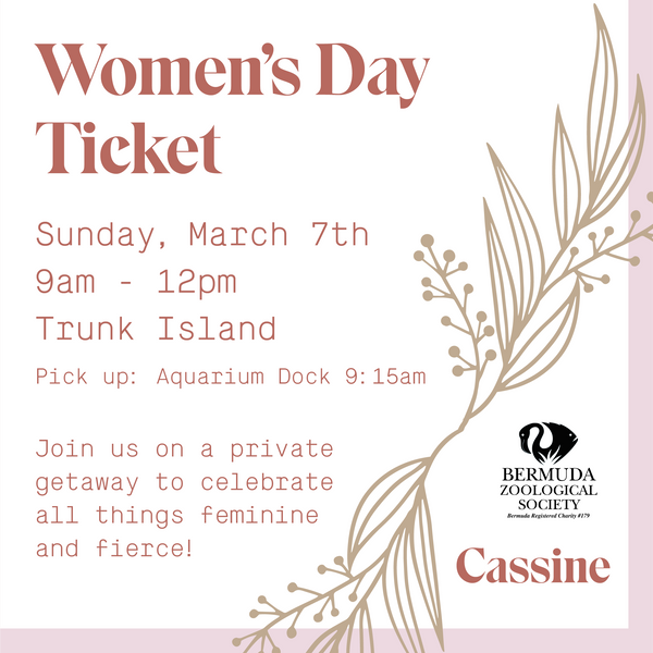Women's Day Ticket - March 7, 2021