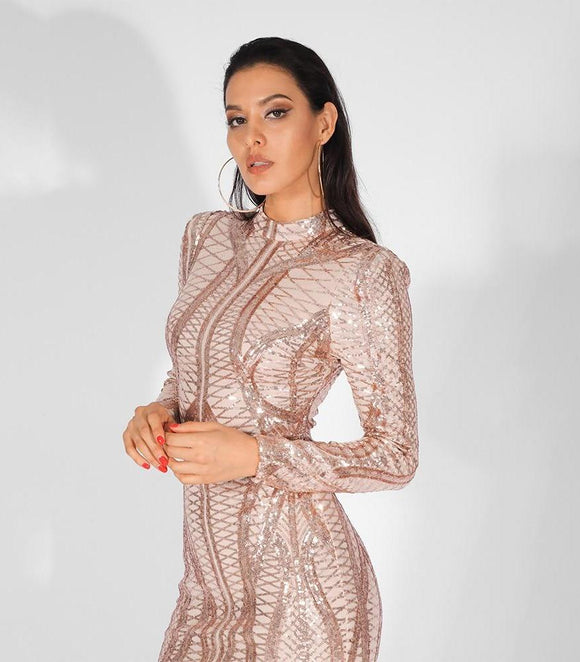 Fabuleux Femme Stand Collar Sequin Mesh Bodycon Dress