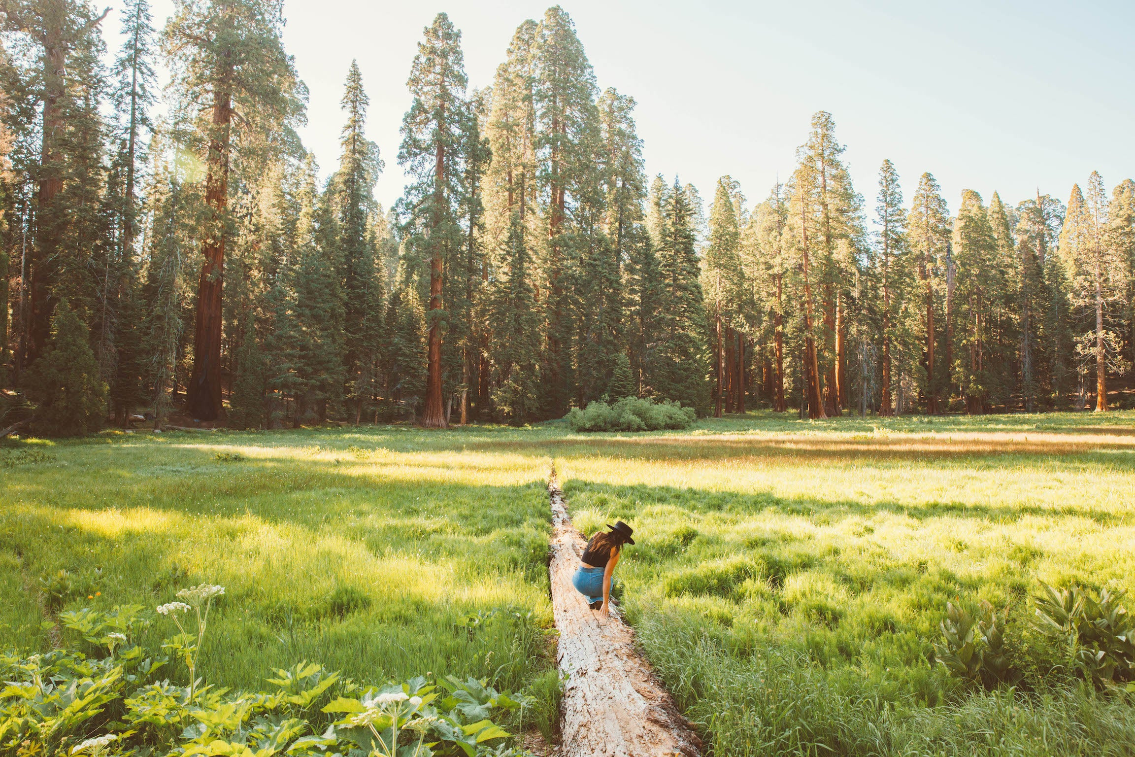 Woman crouches to look at plants while standing on a dirt path in a green field with trees in the distance. Shot by Kate Rentz.