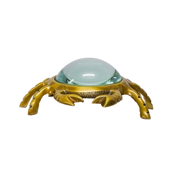 Magnifying Glass Crab