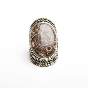 Turritella Agate Ring