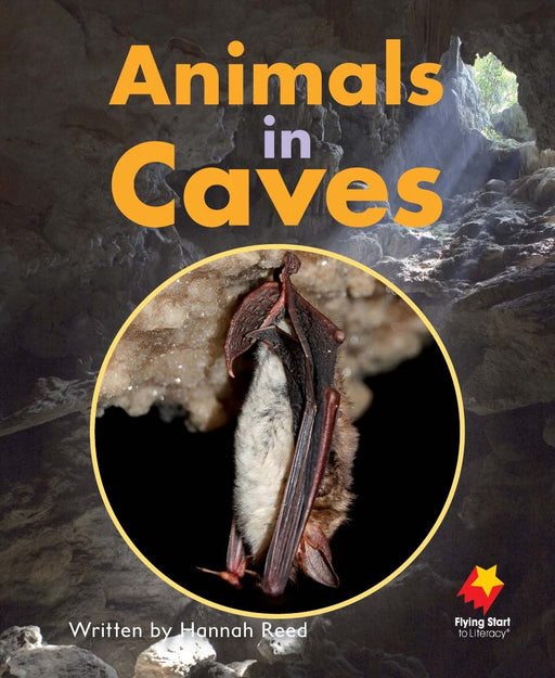 Animals in Caves