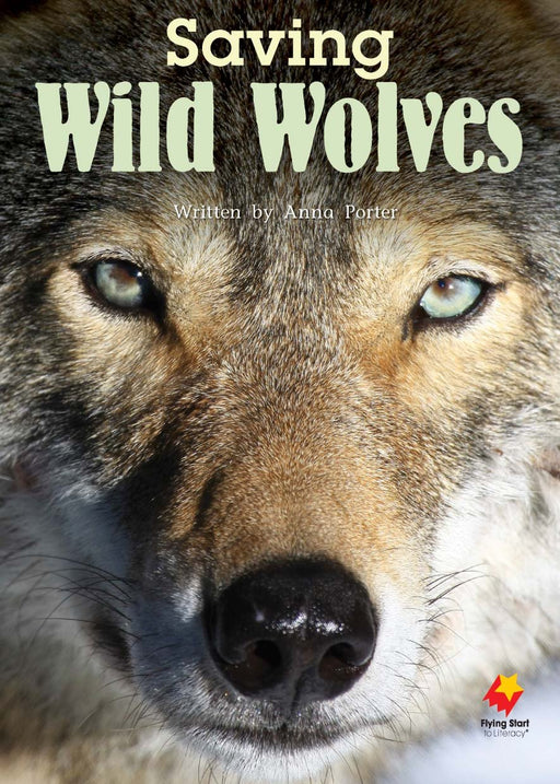 Saving Wild Wolves