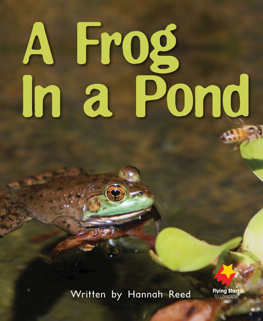 A Frog in the Pond