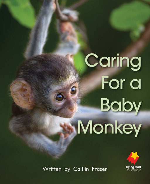 Caring For A Baby Monkey
