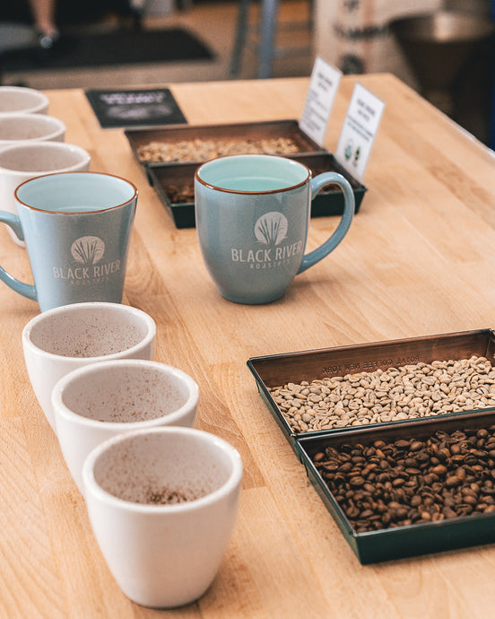 Organic vs. Conventional Coffee