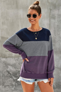 Purple Raglan Sleeve Color Block Pullover Sweatshirt - cheapgoodsonline.com