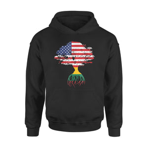 American Flag Lithuanian Roots Lithuania Premium Hoodie