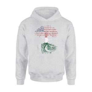American Flag Heart Pakistani Roots Patriot Usa Pakistan Tee Premium Hoodie