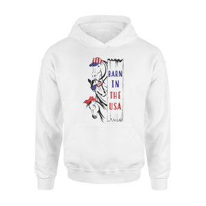 Barn In The Usa Premium Hoodie