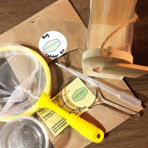 Budding Entomologist Bug Catcher Kit
