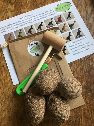 Dinosaur Egg Excavation Kit
