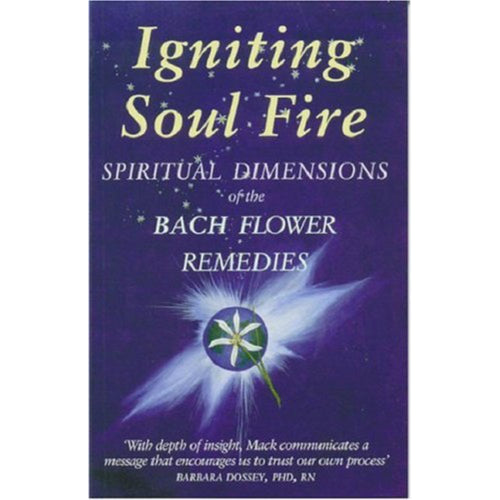 Igniting Soul Fire - Gaye Mack - Align Your Vibe