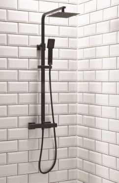 Lunar Rigid Riser Shower Black