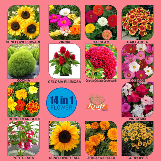 Summer Flower Garden Seeds Series 14 Varieties in 1 Special Pack