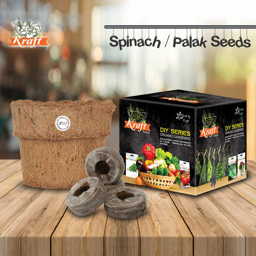 DIY Series Box Of SPINACH / PALAK Vegetables Seeds With Organic Pot & Germination Medium Coin
