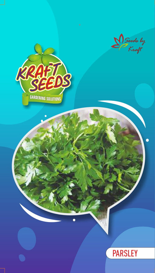 Parsley Moss Curled English Vegetable Seeds Small Pack