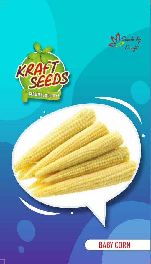 Baby Corn Improved English Vegetable Seeds Small pack