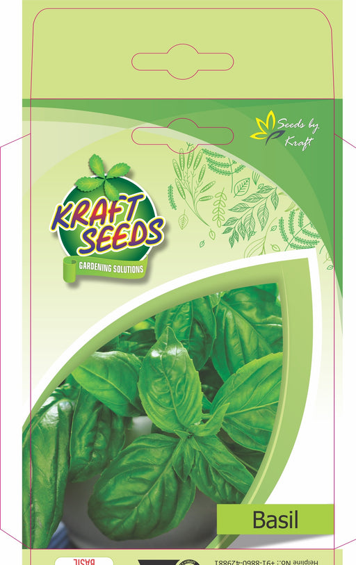 Basil Herb Seeds NON-GMO Seeds Pack for Home and Balcony Gardening