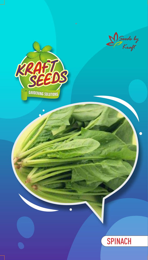 SPINACH / PALAK Vegetable Seeds With Agropeat 100gm KS Exclusive Packs