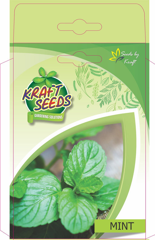 Mint Herb Seeds NON-GMO Seeds Pack for Home and Balcony Gardening