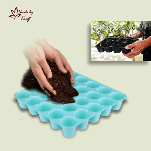 Seedling Starter Tray Set Colourful Spectacular Quality (25 Holes in One Tray) (Pack of 10)