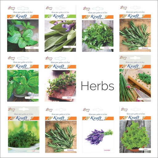 Garden Essentials Herbs Seeds Easy to grow & high germination rate - 14 Varieties of Heirloom
