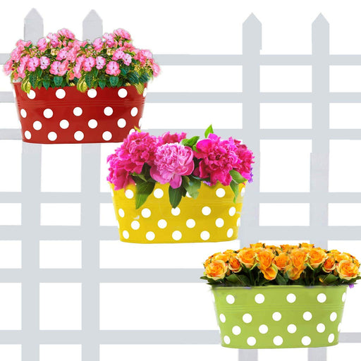 Oval Shaped Planters. (Oval - Multicolour Variety ) Useful for Balcony and Home Gardening (3 Pots)