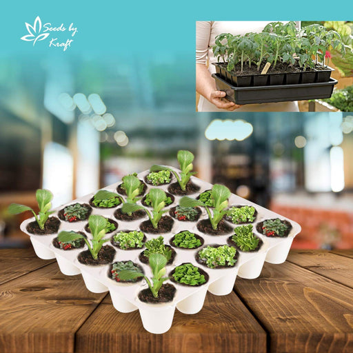 Seedling Starter Tray Set Black Colour Spectacular Quality (25 Holes in One Tray) (Pack of 15)