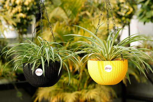 Jute look Gamla / Hanging Planter Stylised Grainy Strong Pot+Black Metal Chain (Multicolor)(2 Pots)