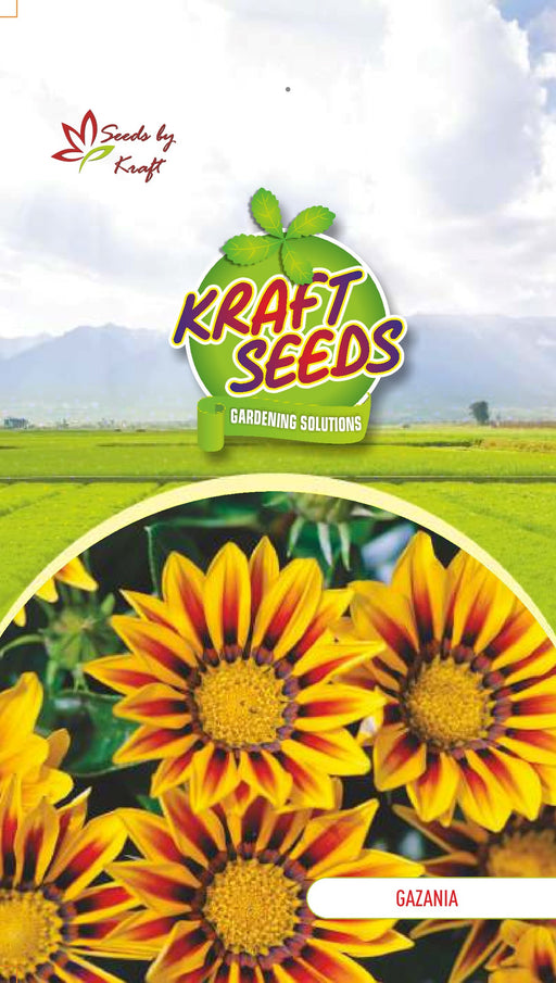GAZANIA SUNSHINE MIX Flower Seeds Pack