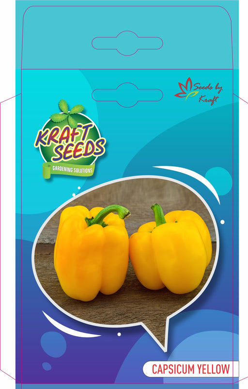 Capsicum Improved F1 Seeds (Yellow) English Vegetable Seeds small pack