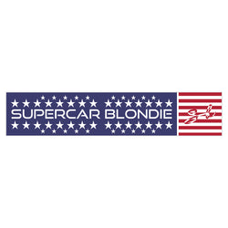 USA SB World Edition Sticker