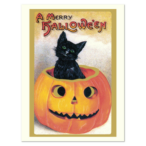 Cat and Pumpkin Greeting Card