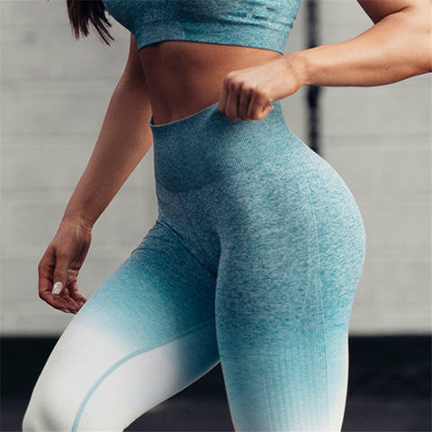 Seamless Ombre Leggings