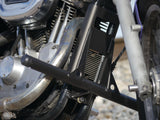 Harley Sportster 1995-2003 Cage and Pegs
