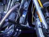 Harley Sportster 2004+ stunt kit (cage and rear pegs)