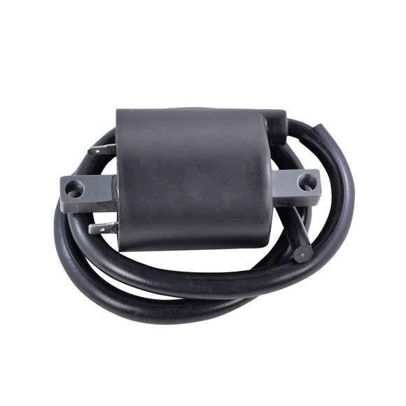 IGNITION COIL SUZ YAM ASSTD MODELS 1986-2017 (RM06168)