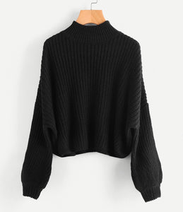 Turtle Neck Batwing Knitted Loose Sweater eotita-apparel-eotita