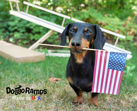 Exciting News! DoggoRamps is Now 'Made in USA'!