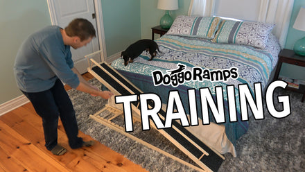 Training/Installation Videos & Timeline Update for Natural Ramps