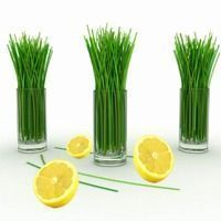 Lemongrass Fragrance oil - COMING SOON
