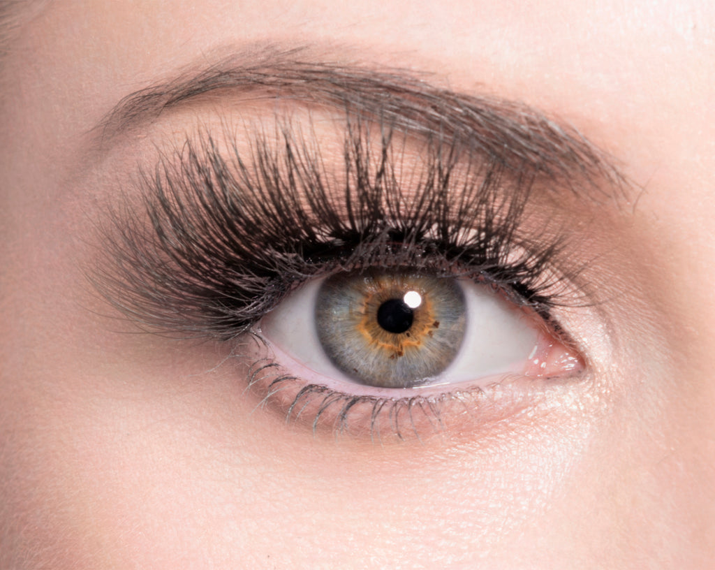 HEIDI - SugarPOP Lashes - Eye Lashes - Lashes
