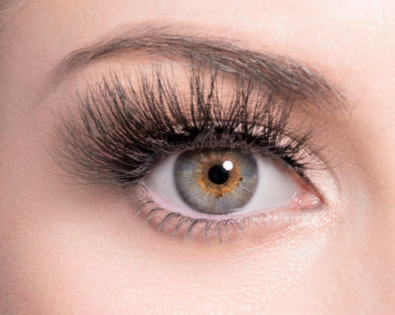 HEDI - SugarPOP Lashes - Eye Lashes - Lashes