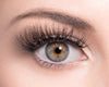 GLAM - SugarPOP Lashes