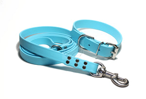 Frozen Blue Biothane Large Dog Leash