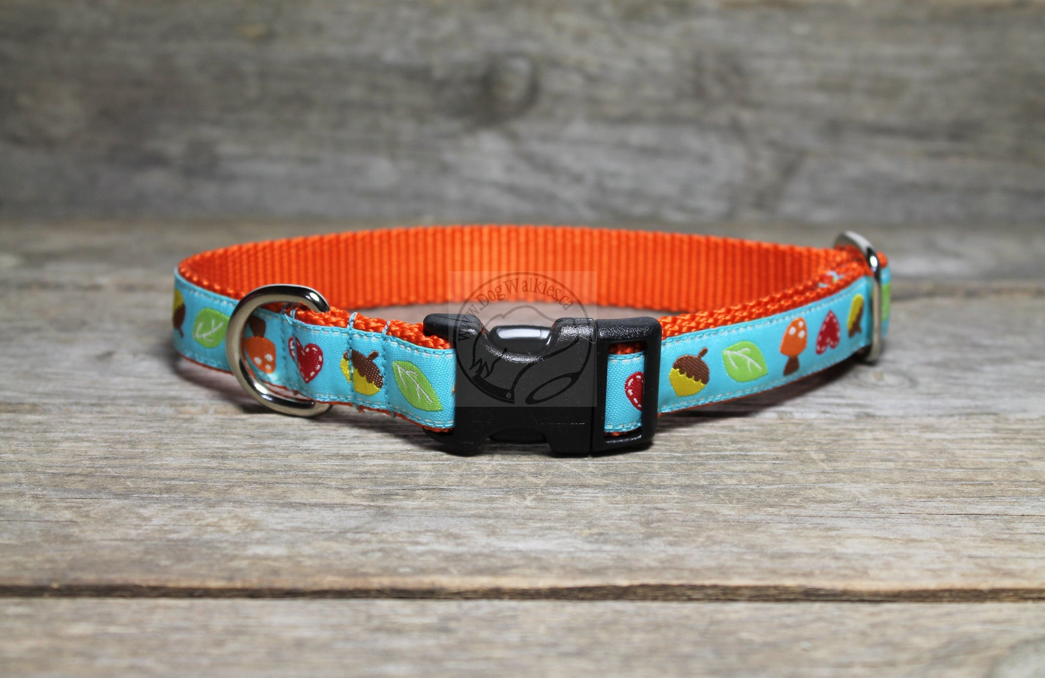 Acorn and Hearts Fall dog collar