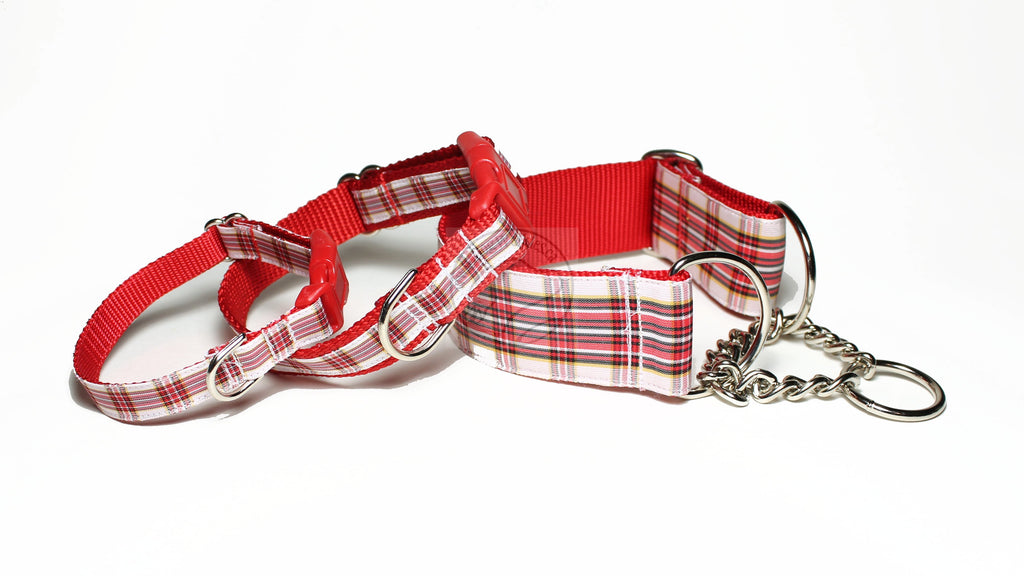 Dress Stuart Clan tartan - dog collar