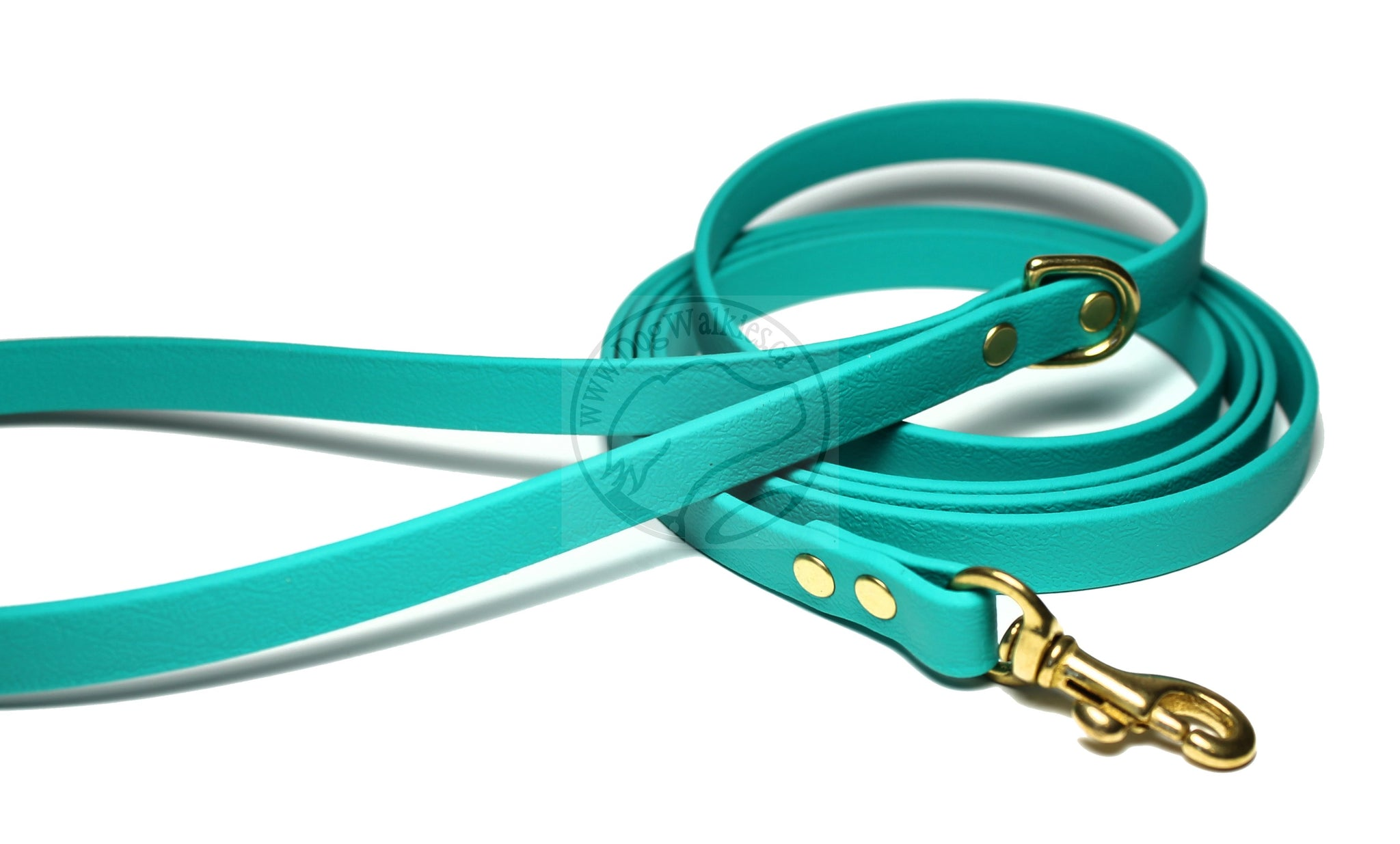 Teal Small Dog Leash