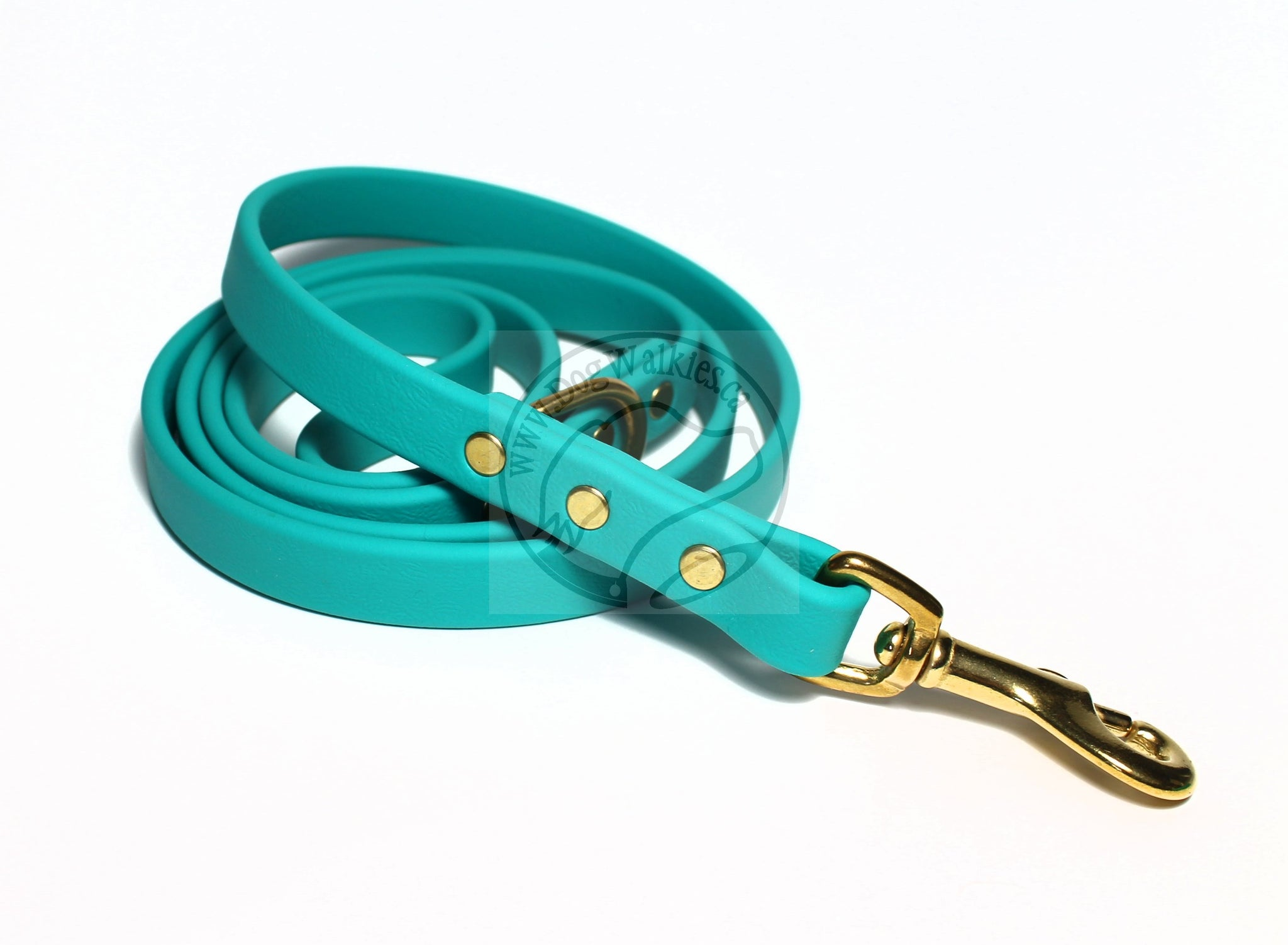 Teal Biothane Dog Leash